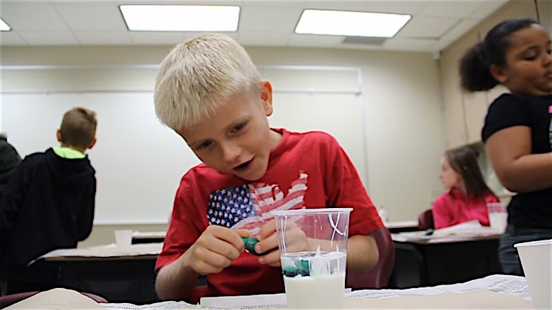 Science in the Elementary Classroom